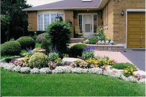 Curb appeal. A well maintained front law with flower garden.